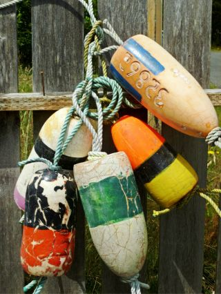 5 Beachcombed Crab Floats Buoy Bouy Net Fishing Fish Lobster Shrimp Maritime 35 photo