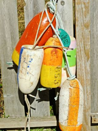 5 Beachcombed Crab Floats Buoy Bouy Net Fishing Fish Shrimp Lobster 61 photo