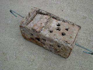 Old Wood Crab Lobster Shrimp Bait Trap Jar photo