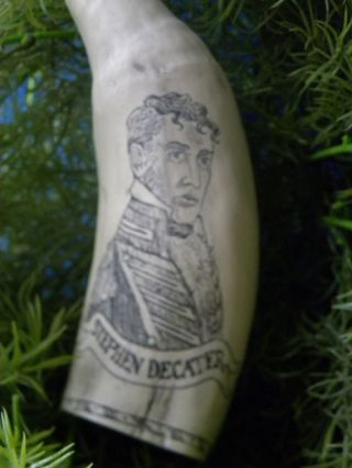 Scrimshaw Sprem Whale Tooth Replica