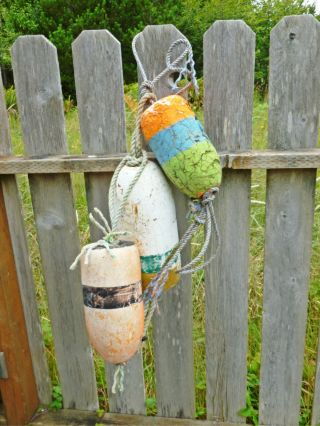 3 Beachcombed Crab Floats Buoy Bouy Net Fishing Fish Shrimp Lobster Marine 3.  1 photo
