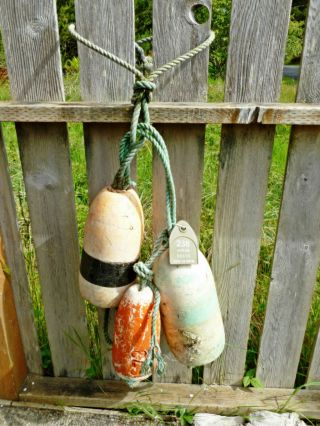 Authentic 3 Beachcombed Crab Floats Buoy Bouy Net Fishing Fish Shrimp Lobster 73 photo