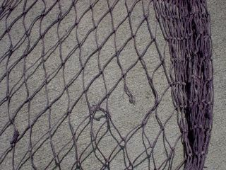 5 X 16 Beachcombed Purple Fishing Fish Net (a) photo