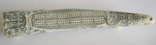 As New Imitation Scrimshaw Walrus Tooth - Crib Board - Vgc photo