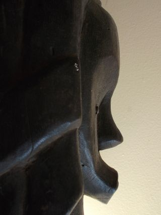Item 052 Fang Tribe Bieri African Reliquary Guardian Figure Head Gabon photo