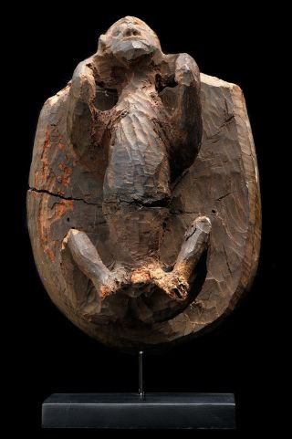 Ancient Coffin Figure From Bahau,  Kalimantan,  Indonesia,  Fine Tribal Art Se Asia photo