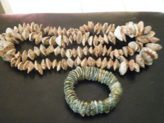 2 New Guinea Vintage Shell Necklaces And Bracelet Limpets Bn $50 Ex Con photo