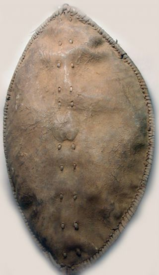 African Weaponry Artifact Maasai Leather War Shield Ethnographic Tanzania Ethnix photo