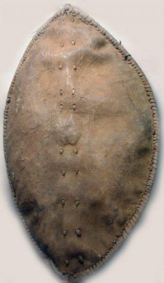 African Weaponry Artifact Maasai Leather War Shield Ethnographic Tanzania Ethnix photo