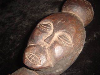 A Fine Aitos Belu Figure Sculpture Headhunting Tribe Ti photo