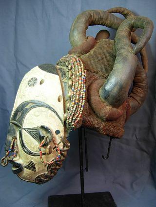 Outstanding Igbo Mmwo Spirit Maiden Headdress /leather Horns / Yoruba / Nigeria photo
