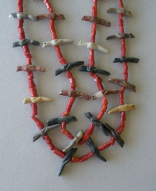 Antique 2 - Strand Zuni 28 Birds And Coral Fetish Necklace 26