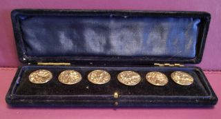 Antique Solid Silver Cased Set Of 6 Solid Silver Buttons Rare London Maker 1894 photo