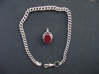 Graduated Silver Watch Chain Plus Bloodstone Fob photo