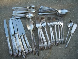 Gorgeous 52 Piece Vintage Rogers First Love Flatware Assortment Nr photo