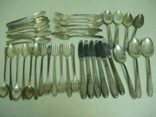 Wm Rogers & Son Is Rose Plated 49 Pcs photo