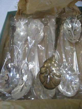 9 Silverplate Rogers & Bros Bon Bon Nut Relish Spoon 6 1/4 Inch 1956 Royal Manor photo