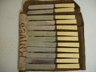 Antique Set 12 Birks Stainless Dinner Knives Celluliod Handles photo