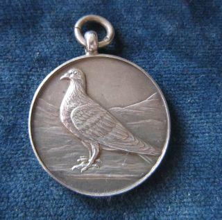 Vintage Solid Silver Pigeon Fob - Birmingham 1952 photo