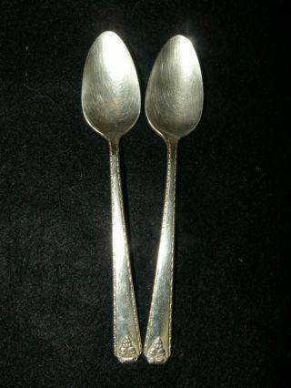2 Tea Spoon - - Prestige Plate Bordeaux photo