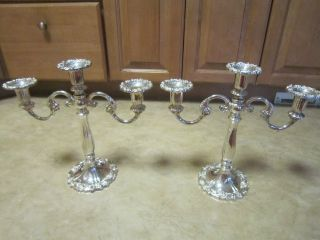 Pair Of Antique 3 - Arm Art Nouveau Candelabras,  Sheffield Silver Co,  Italy photo