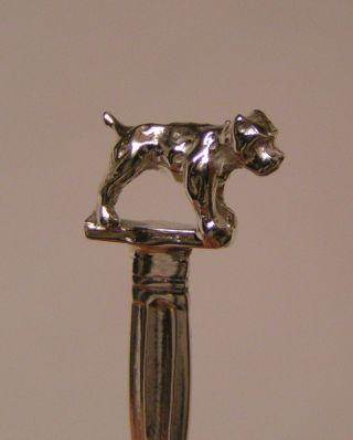Salt Spoon (bull Dog) Sterling Silver photo