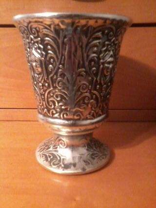 Usa Silver - Plated Cup photo
