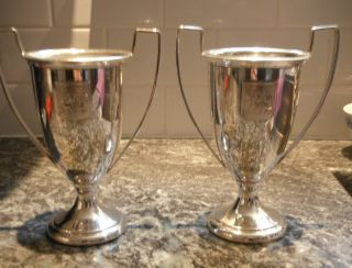 Silverplate Cups Trophies Holland - America Line photo