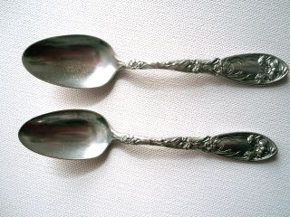 Oxford Narcissus Silverplate Teaspoons photo