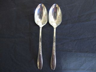 Oneida Wm A Rogers Country Lane 2 Large Serving Spoons photo