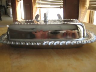 Silver Covered Butter Dish photo