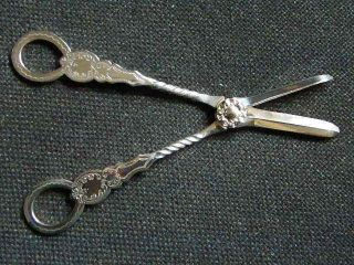 Pair Of Antique Electroplated Grape Scissors - Mint Condition photo