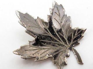 Vintage Sterling Silver Tree Leaf Maple? Canada? Brooch photo