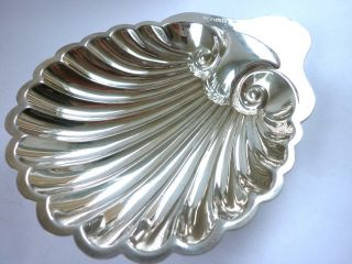 Excellent Antique Silver Shell Butter Dish 1907,  James Deakin photo