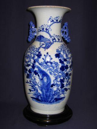 Chinese Antique Vase,  Bird Design,  Tongzhi Period photo