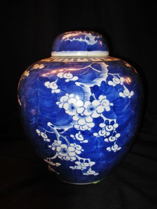 Large & Rare Antique Chinese Blue & White Porcelain Prunus Jar Vase photo