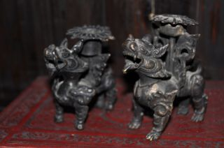 Vey Old Bronze Foo Dog / Shi Shi Lions photo