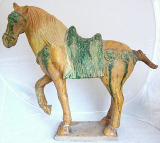 Chinese Yellow & Green Glazed Shiwan Style Pottery Horse W/ Scarabs (17.  5