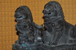 Majestic Bronze Foo Dog Statues photo
