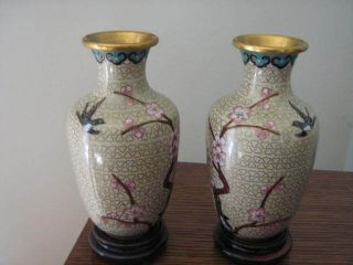 A Pair Of Vintage Pretty Cloisonne Gold Flower Bird Design Vases On A Wood Stand photo