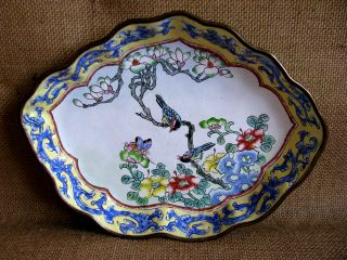 Attractive Chinese Canton Enamel Dish.  Early 1900s photo