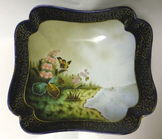 Meissen? Antique Large Handpainted Porcelain Bowl Butterfly 1800 ' S Numbered photo