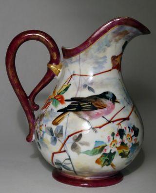 Antique 19th C French Old Paris Porcelain Pitcher W/birds - Flowers - Leaves photo