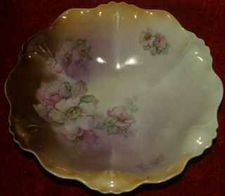Vintage Rs Silesia Prussia Hand Painted Roses Large 9
