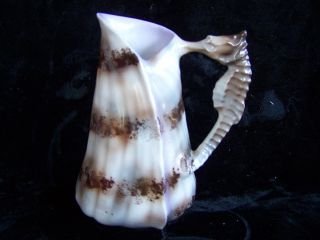 Antique Royal Bayreuth Seashell And Seahorse Germany Porcelain Milk Pitcher photo