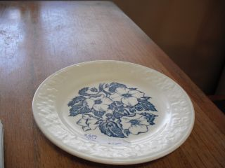 Vintage Wild Rose Dessert Plate photo