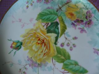 Victorian Hand Painted,  Raised Gilt,  Wedgwood Bone China Cabinet Plate photo