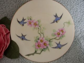Antique Handpainted Bluebird Flower Plate Tirschenreuth Bavaria 1903 - 27 Germany photo