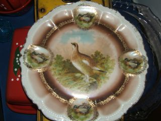Vintage Pm Bavaria Bird Plate/quail And Duck photo
