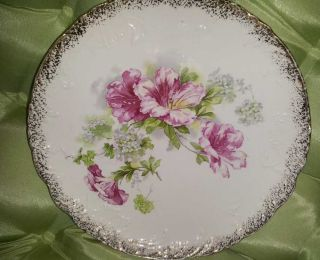 Vodrey Floral Decorative Plate photo